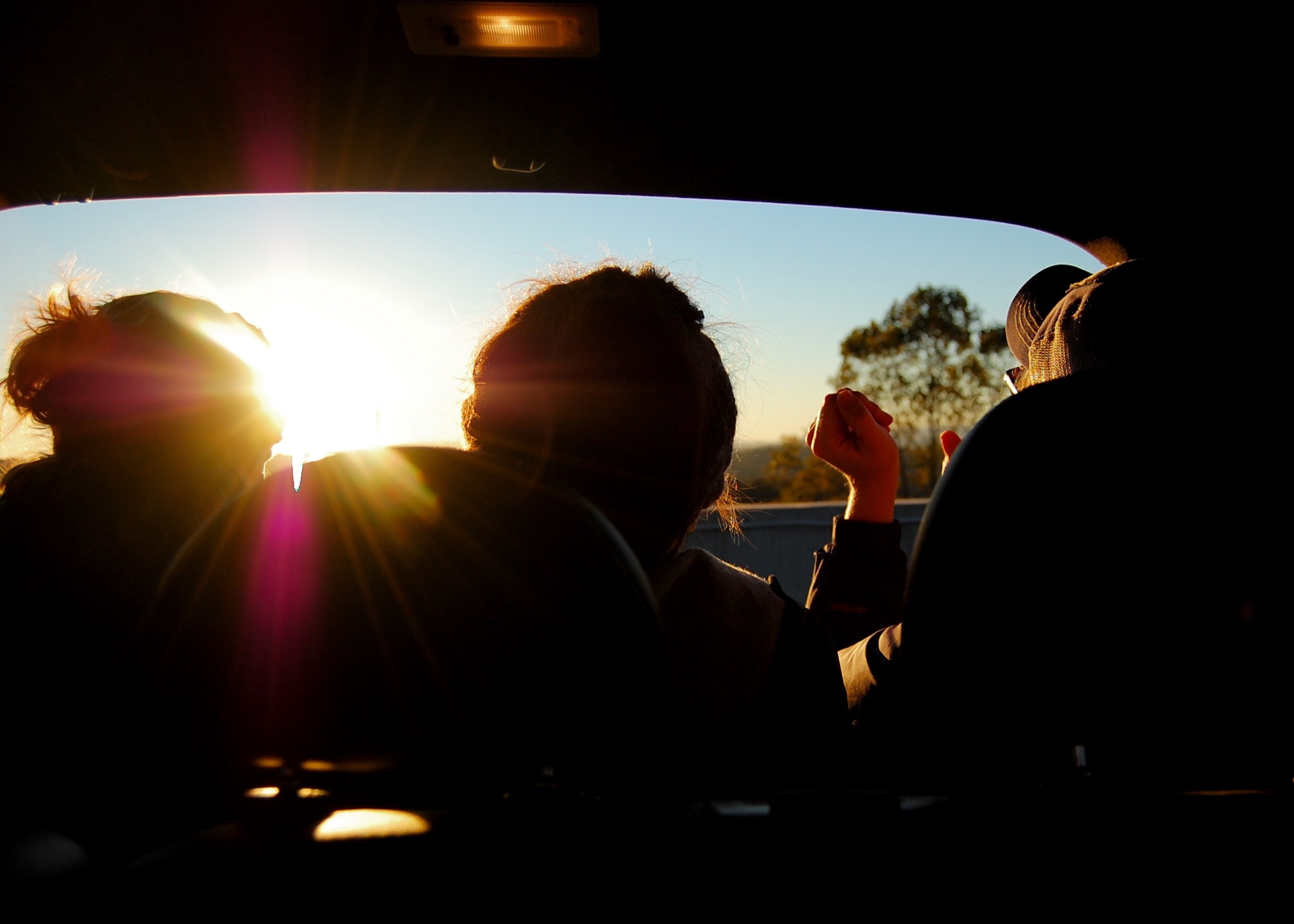 Blog: 10 of the craziest ways to keep cool in your car